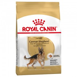 Royal Canin chien Berger Allemand adulte